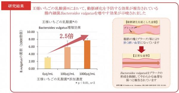 """「王様いちごの乳酸菌®で""""やわらか血管""""に!」 九州大学との共同研究成果 を公表いたします"""